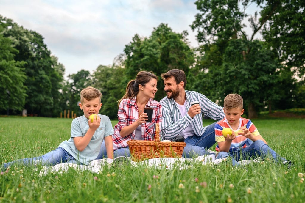 family enjoying a picnic at the park
