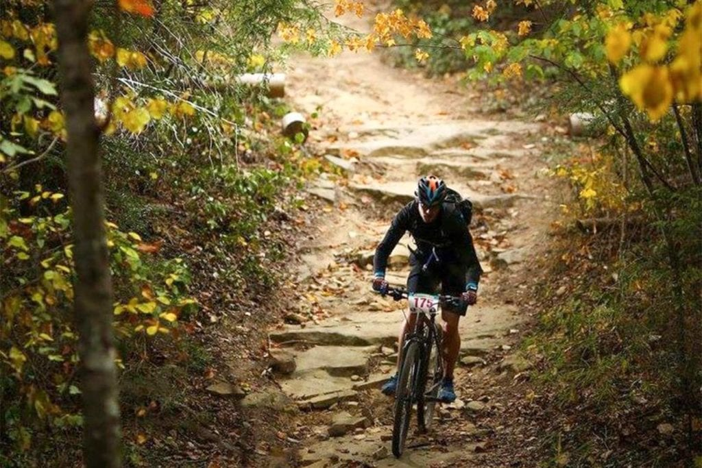 Biker on the trail in the 5-Points-50 Race