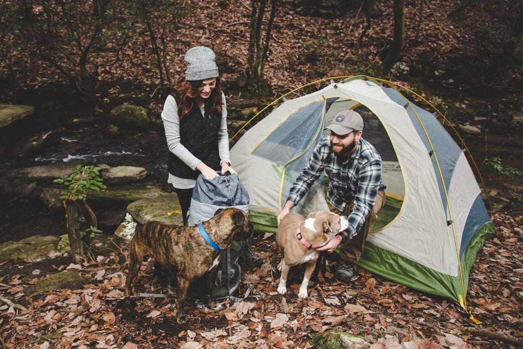 couple camping with their dogs; photo by Rich Smith